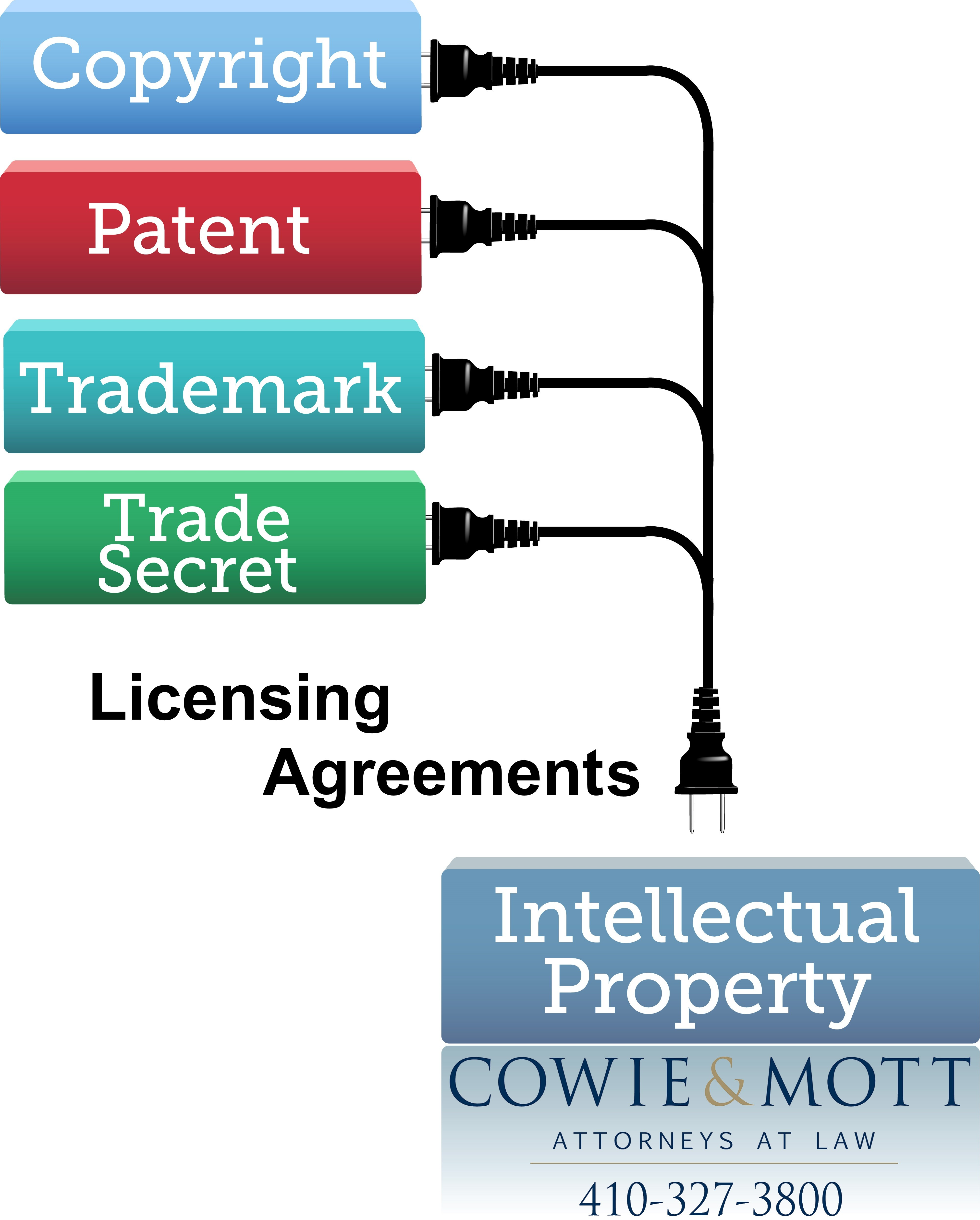Intellectual Property Trademark Cases